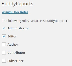Control role access to BuddyReports
