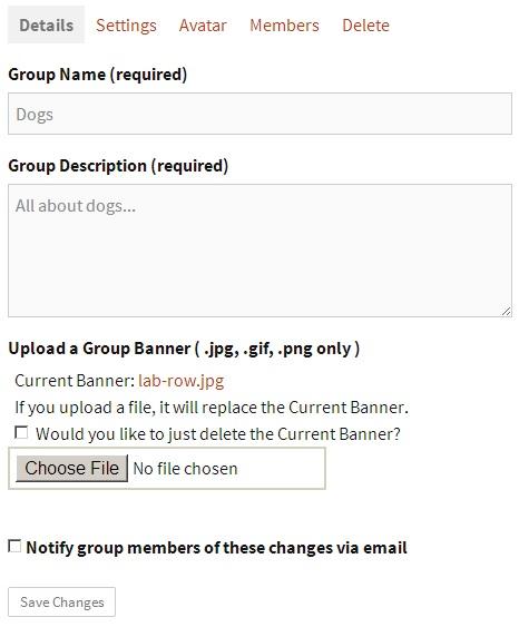 banner-option