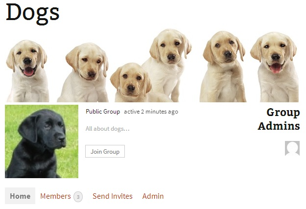 dogs-banner